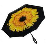 Umbrella $35 Don +shipping